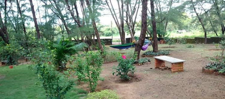 Sitting area and hammocks